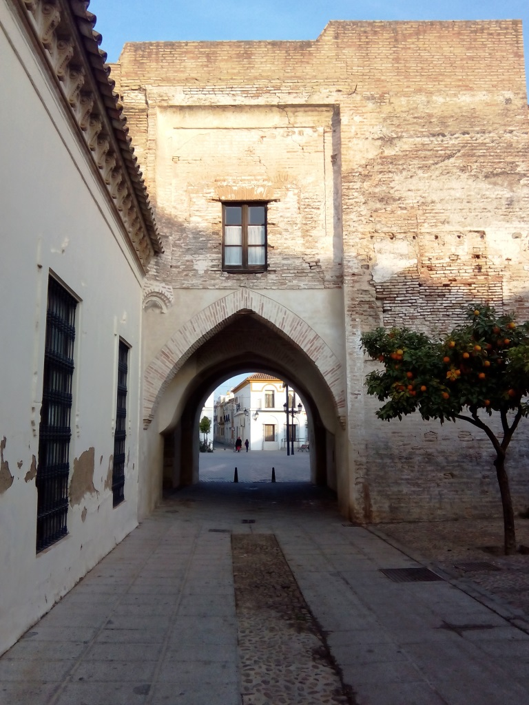 Palma rio_Cordoba_Puerta sol_cosa vedere