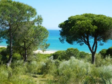 barbate_andalusia_viaggio_italiano_consigli_cadice