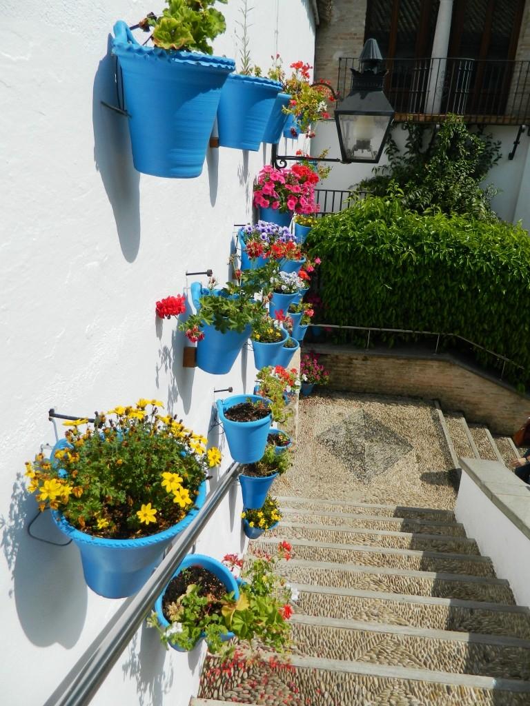 I cortili (patios) di Cordoba - zoco