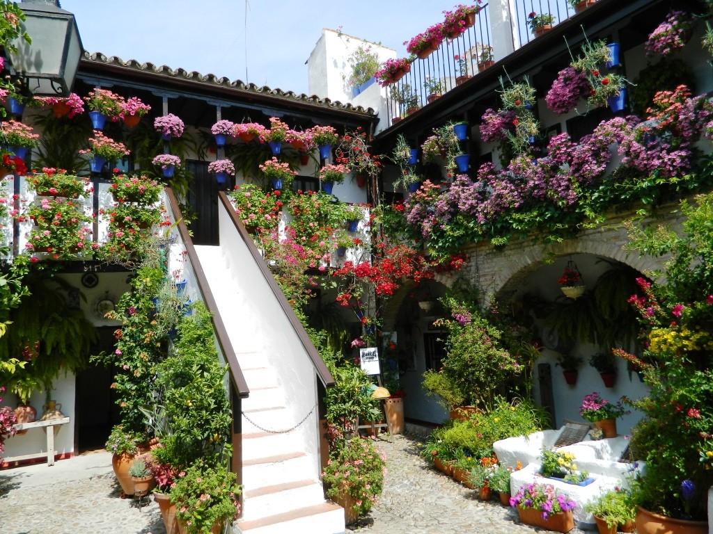 I cortili (patios) di Cordoba - Uno dei cortili vincitori del concorso nel 2015.