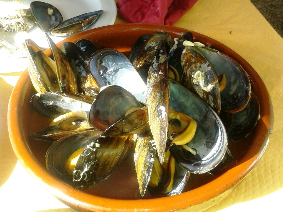 cosa mangiare andalusia pesce choco Mejillones
