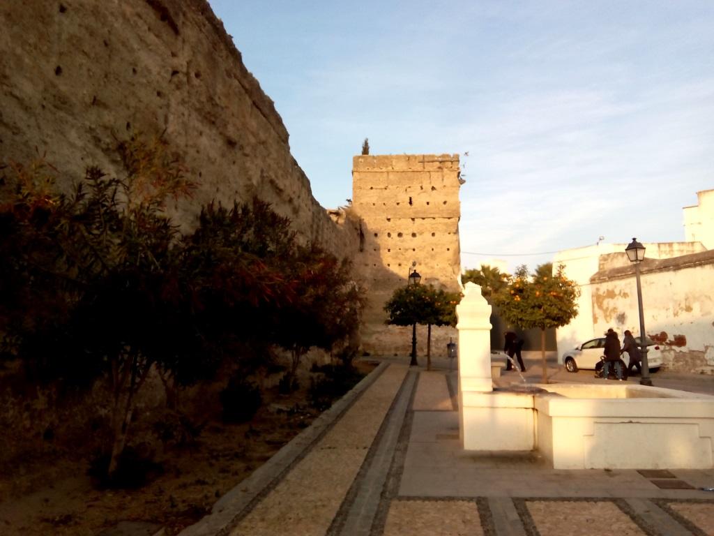 Andalusia_Palma del rio_cosa vedere
