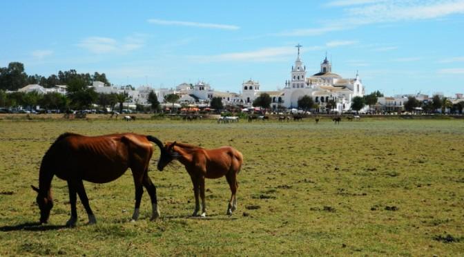 El Rocio: un rito polemico in Spagna in un paesaggio splendido
