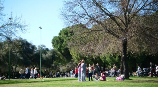 Andalusia_Andalucia_Cosa vedere_Bambini_Tour_Consigli_Alamillo