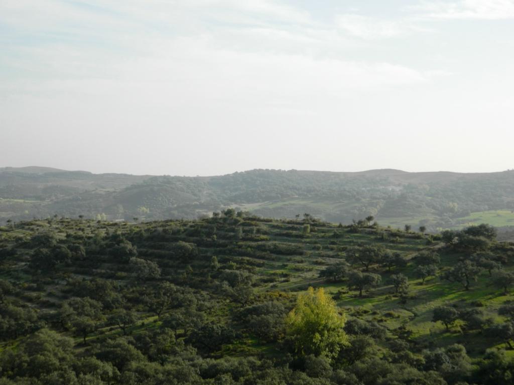 aracena_huelva_andalusia_andalucia_cosa-vedere_consigli_tour