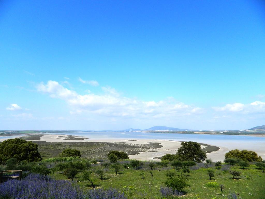 fuente-de-piedra_malaga_andalusia_andalucia_tour_consigli_viaggio_vacanza_cosa_vedere_laguna_sud