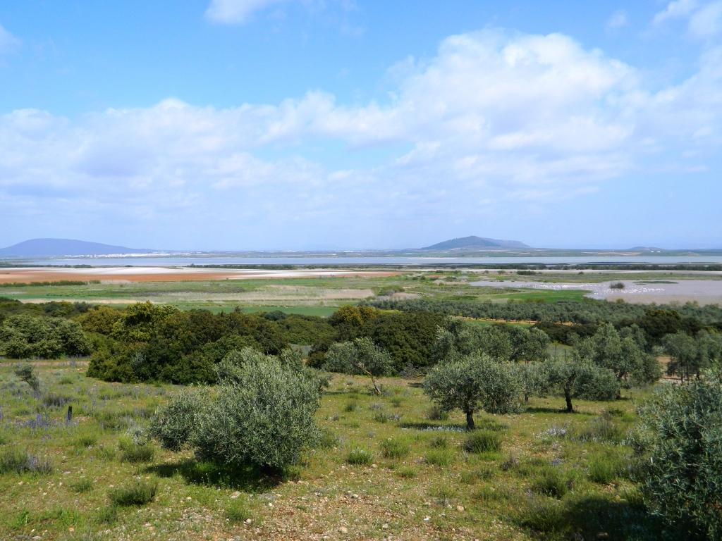 fuente-piedra_tour-andalusia_cosa-vedere_consigli_andalucia_visitare