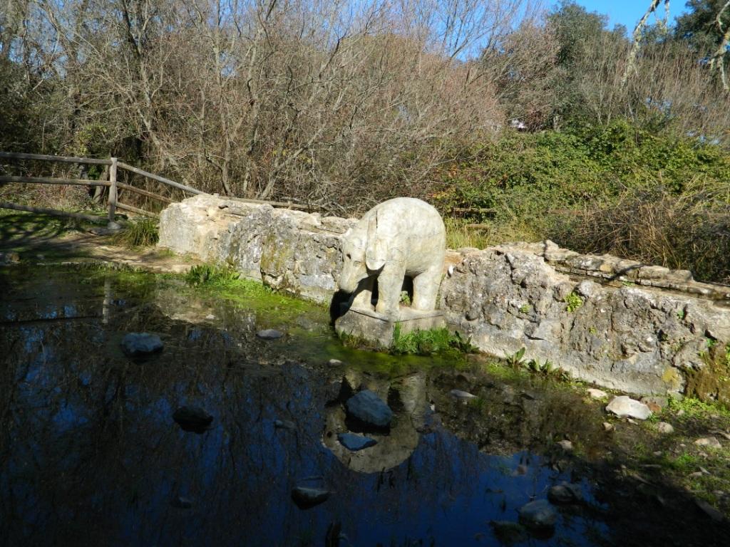 Cosa vedere Cordoba_Fuente del elefante