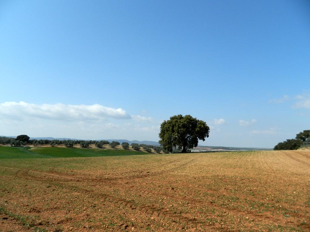 Vivere in Andalusia_Clima