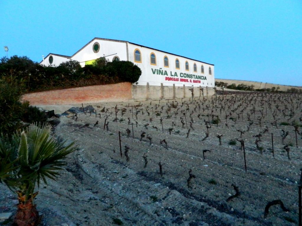 Cosa vedere Jerez de la frontera Andalusia Vino La constancia
