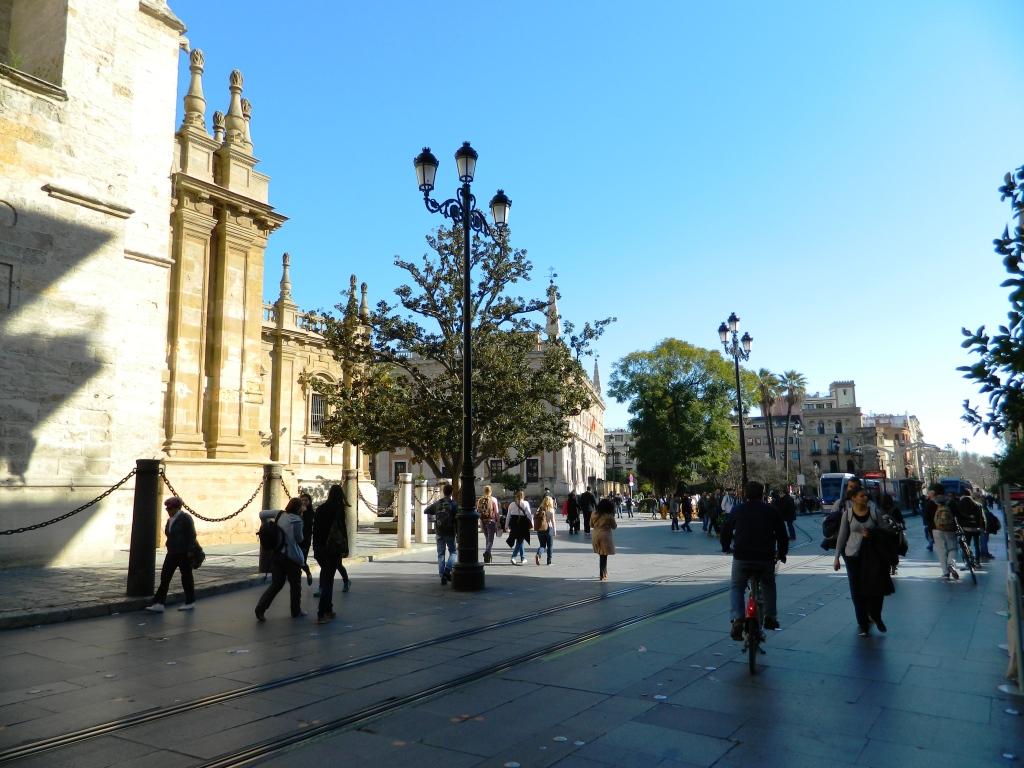Cosa vedere siviglia bicicletta avenida cattedrale