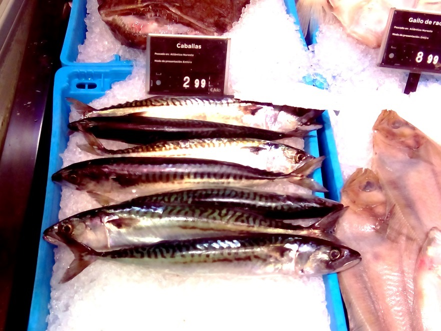 cosa mangiare andalusia pesce caballa2