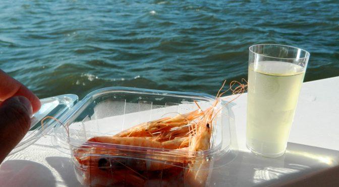 Barca_Huelva_Isla_cristina_gamberi_vino_bianchi