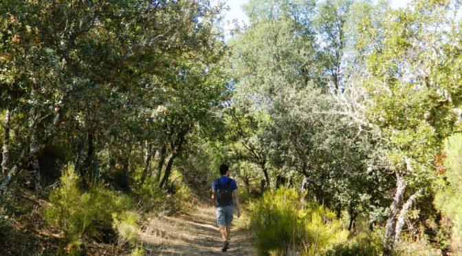 Il parco Despeñaperros: confine naturale tra Andalusia e La Mancia
