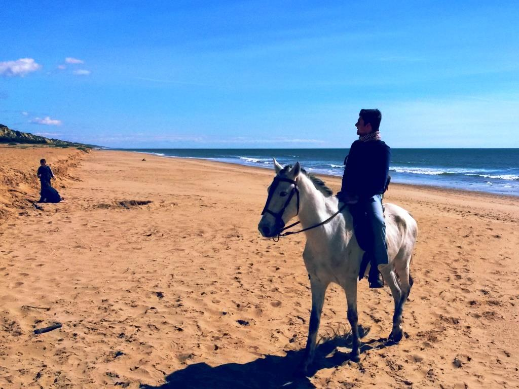 Cavallo_spiaggia_huevla_doñana