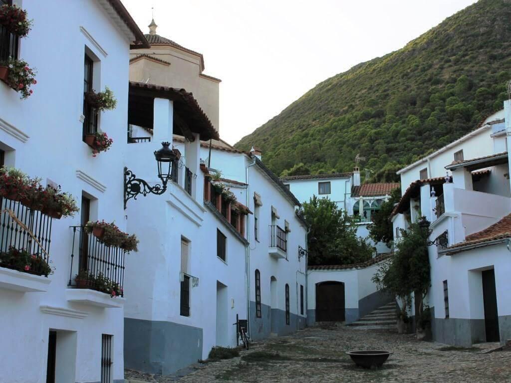 tour_prosciutto_huelva_jamon_linares_sierra