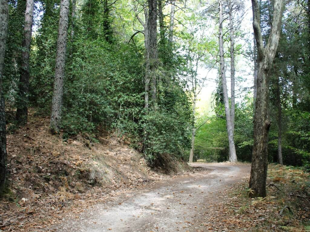 Sierra_segura_natura_andalusia_agrifogli
