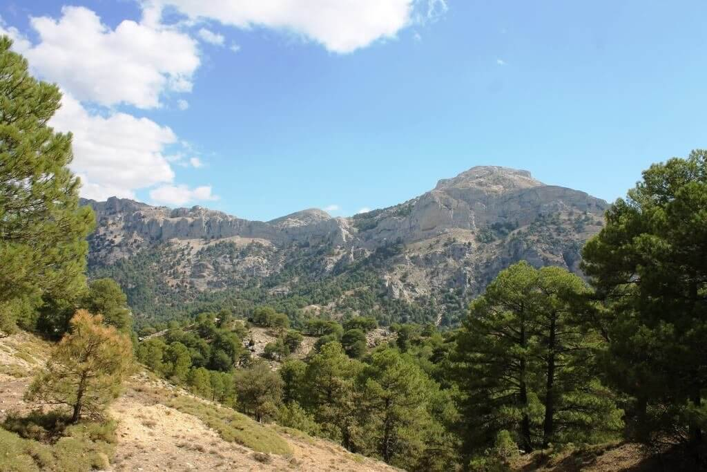 Natura in andalusia sinonimo di sierra de segura for Sinonimo sfruttare