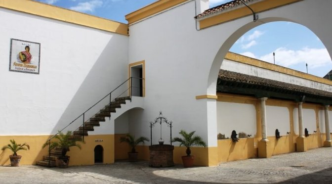 Cosa vedere a Sanlúcar de Barrameda: cantine, parco e gastronomia