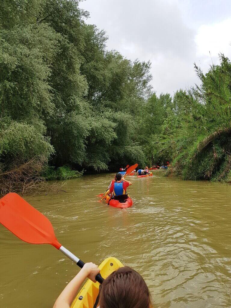cosa_fare_doñana_kayak