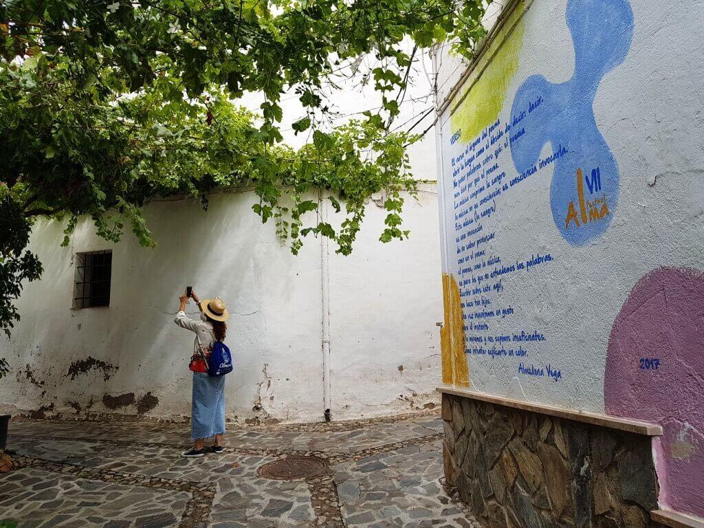 cosa_vedere_alpujarra_almeria_almocita_murales