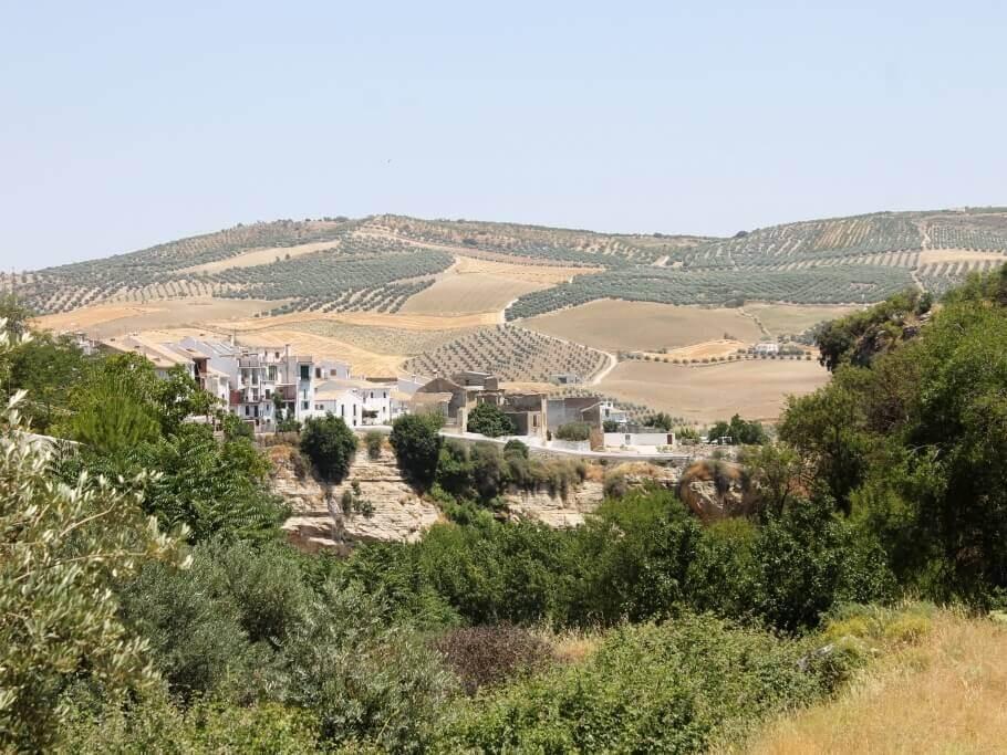 quando_visitare_andalusia_campo