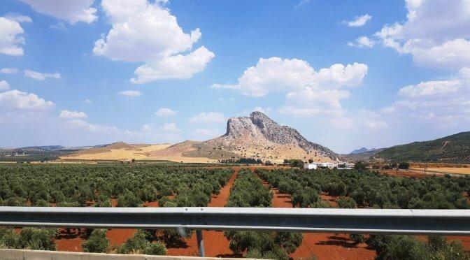 Tra Siviglia e Malaga: dove andare e cosa vedere